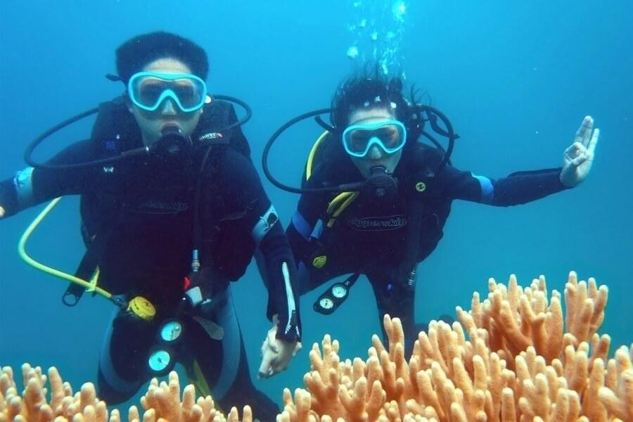 Lặn Ngắm San Hô Bán Đảo Sơn Trà - Cùng Khám Phá Đáy Biển Đẹp Nhất ...